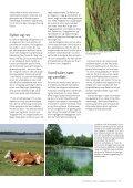 Fremtidens natur - Danmarks Naturfredningsforening - Page 7