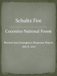 the Burned Area Emergency Response (BAER) Report.