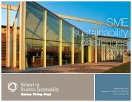 SME sustainability challenges 2012 - Network for Business ...
