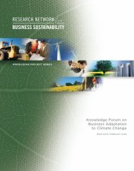 Summary Report - Network for Business Sustainability
