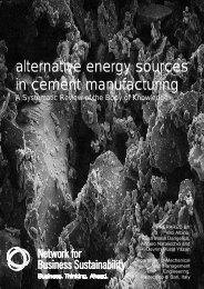 alternative energy sources in cement manufacturing - Network for ...