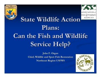 State Wildlife Action Plans: Can the Fish and Wildlife Service Help?