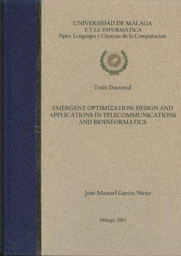Emergent Optimization - NEO - Universidad de Málaga