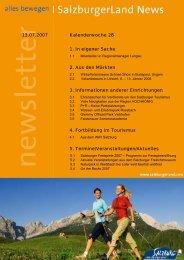 Nummer 28/2007 - SalzburgerLand Netoffice - Salzburger Land