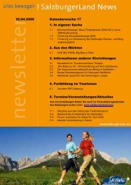 Nummer 17/2008 - SalzburgerLand Netoffice