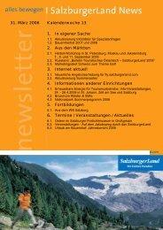 Nummer 13/2006 - SalzburgerLand Netoffice
