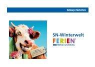 SN-Winterwelt - SalzburgerLand Netoffice