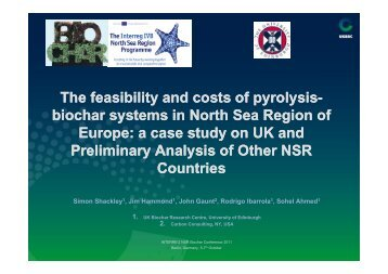 The feasibility and costs of pyrolysis The feasibility and ... - ANS eV