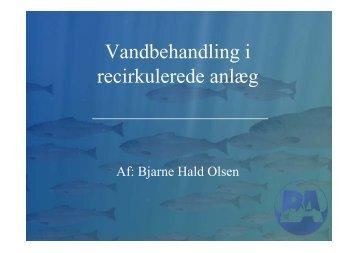 Billund Akvakultur Service - AquaCircle