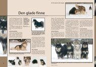 PDF-file: Finsk lapphund - Dansk Kennel Klub