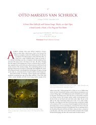 Otto Marseus van Schrieck, a Forest Floor still-life
