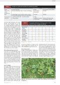 Frederiksdal vil lave verdens bedste kirsebærvin - Gartneribladene - Page 5
