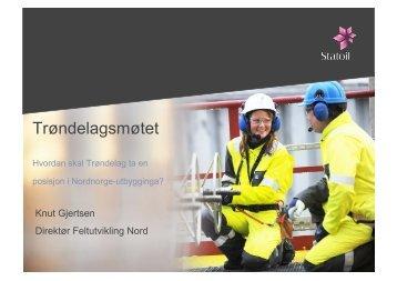 Knut Gjertsen.pdf