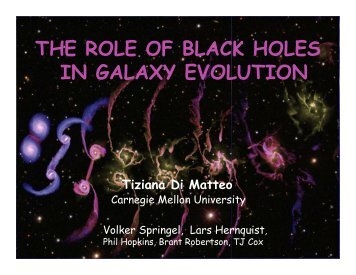 the role of black holes in galaxy evolution - New Views of the Universe