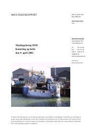 SINE - forlis den 9. april 2002 - Søfartsstyrelsen