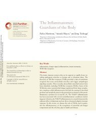The Inflammasomes: Guardians of the Body