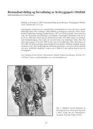 Bestandsutvikling og forvaltning av hvitryggspett i Østfold