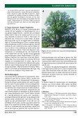 Blyttia201102_OMSLAG - Page 3