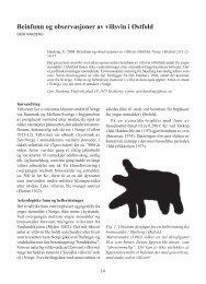 Beinfunn og observasjoner av villsvin i Østfold