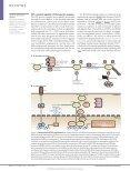 immunoloGy - Nizet Laboratory at UCSD - Page 3