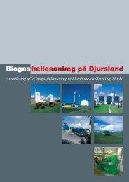 Etablering af biogasanlæg på Djursland - Djurs Bioenergi