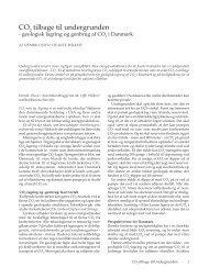 Læs pdf-fil (7200 kB) - Dansk Geologisk Forening