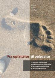 4. Fra opfattelse til oplevelse - Aalborg Universitet