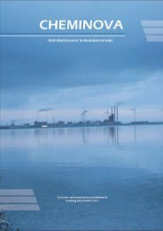 Speciale-G1-2007-Cheminova - Aalborg Universitet