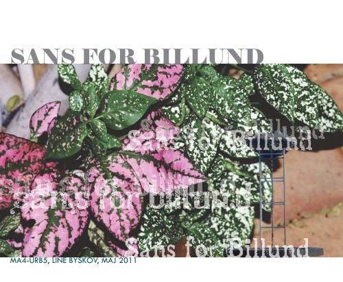 SANS FOR BILLUND - Aalborg Universitet