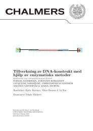 Tillverkning av DNA-konstrukt med hjälp av enzymatiska metoder