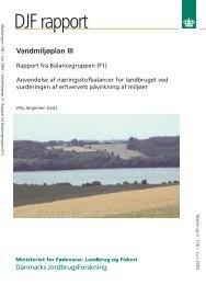 DJF rapport - PURE