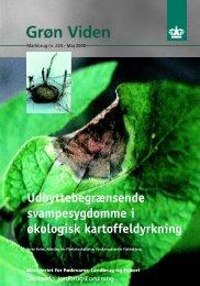 Udbyttebegrænsende svampesygdomme i økologisk ... - PURE