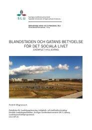 blandstaden och gatans betydelse för det sociala livet - SLU