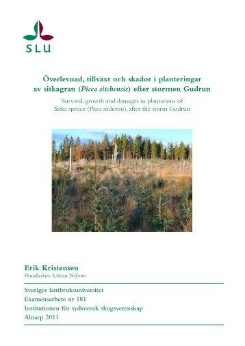 Erik Kristensen Överlevnad, tillväxt och skador i planteringar ... - SLU
