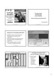 Cervikogen Hovedpine - Danske Fysioterapeuter