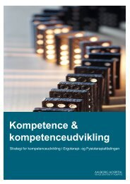 Kompetence & kompetenceudvikling 2009 for ergo - Aalborg ...