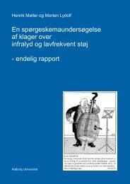 Sporgeskema rapport ver4 - VBN - Aalborg Universitet