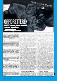 Oppdretteren del4 - Norsk Kennel Klub