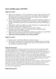 Større skriftlige opgave 2012/2013
