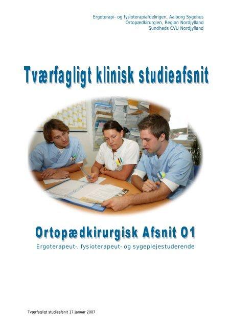 Projektbeskrivelse for studieafsnittet - Aalborg Universitetshospital ...