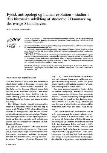 Fysisk antropologi og human evolution - stadier i den - Dansk ...
