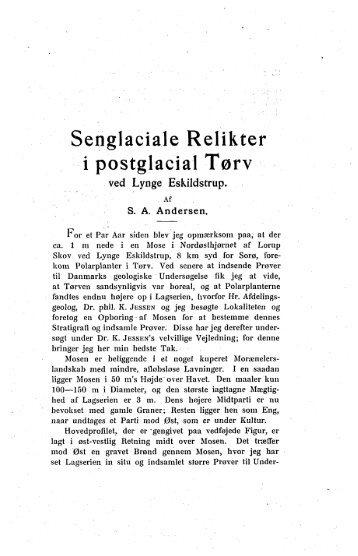 Senglaeiale Relikter i postglacial Tørv ved Lynge Eskildstrup