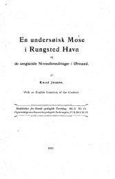 En undersøisk Mose i Rungsted Havn og de - Dansk Geologisk ...
