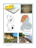 Hent pdf-fil (1.7 MB) - Dansk Geologisk Forening - Page 6