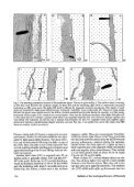 (Denmark), pp. 161-171 - Dansk Geologisk Forening - Page 4