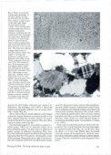 (Denmark), pp. 161-171 - Dansk Geologisk Forening - Page 7