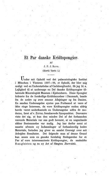 Et Par danske kridtspongier. (Med 1 tavle) - Dansk Geologisk Forening