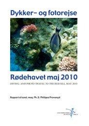 Rapport fra dykker- og fotorejse til Rødehavet i 2010. - Naturhistorisk ...