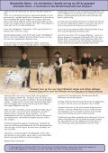 nr 1 test.pmd - Appaloosa-stamboek - Page 5