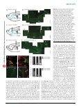 ARTICLES - Ashery-Padans Lab - Page 3